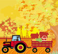 Man driving a tractor with a trailer full of vegetables in autum illustration Royalty Free Stock Photo