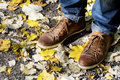 Man'e shoes in dry autumn leaves Royalty Free Stock Photo