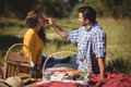 Man feeding girlfriend while sitting on picnic blanket Royalty Free Stock Photo