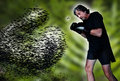 Man fighting mosquito a battered fights a single with a swarm shaped as a boxing glove behind it Stock Images