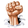 Man Fist Stock Images