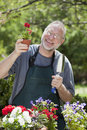 Man Gardening Outdoors Royalty Free Stock Photos