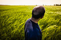 Man in green field Royalty Free Stock Images