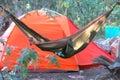 Man in the hammock Royalty Free Stock Photo