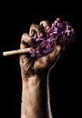 Man hand with flower on black background Royalty Free Stock Image