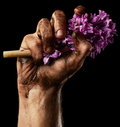 Man hand with flower on black background Royalty Free Stock Photo
