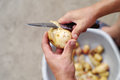 Man hands slicing fresh potato. Royalty Free Stock Photo