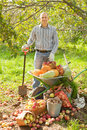 Man with  harvest in garden Stock Images