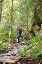 Man hiker on a marked trail through the forest caucasian with backpack walking pine Royalty Free Stock Photos