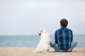 Man with his dog at the summer beach sitting back to camera Royalty Free Stock Photo
