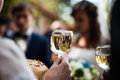 Man holding elegant glass of champagne in a restaurant celebrati Royalty Free Stock Photo