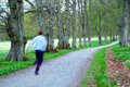 Man jogging on avenue with walking path in park Royalty Free Stock Photography