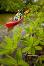 Man kayaking in tropical young a kayak a river Royalty Free Stock Images