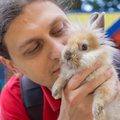 Man kissing the baby rabbit. Animal care Royalty Free Stock Photo