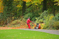 Man with leaf blower employee removed colorful autumnal leaves a and cleaned up park way Stock Photo