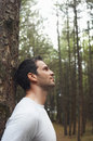 Man Leaning On Tree Trunk In Forest Royalty Free Stock Photo
