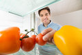Man Looking At Tomatoes Inside The Refrigerator Royalty Free Stock Photo