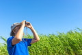 Man looks for through the reeds with binoculars Royalty Free Stock Image