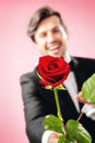 Man in love with red rose out of focus Royalty Free Stock Image