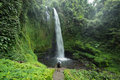 Man by lush green tropical Rain forest waterfall Royalty Free Stock Photo