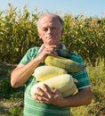 Man with marrow squashes in the garden Royalty Free Stock Photo