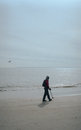 Man with a metal detector searching the beach of coney island Royalty Free Stock Photography