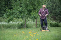 Man is mowing the lawn in summer Royalty Free Stock Photo