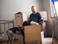 Man packing plates people moving house Royalty Free Stock Photography