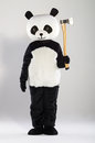 Man in panda costume over white background Stock Image