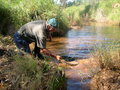 Man panning for gold in western australia Royalty Free Stock Image