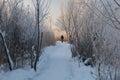 Man on pathway walks away the snowy Stock Image