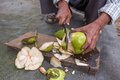 Man peeling coconut fruit with knife Stock Image