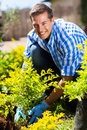Man planting shrub happy in his home garden Royalty Free Stock Photography