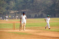 Man playing cricket on the grass of the stadium in Mumbai India Royalty Free Stock Photo