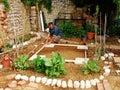Man Preparing Land Garden Shed Royalty Free Stock Photo