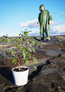 Man in protective suit near green plant Stock Image