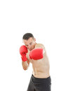 Man punching with red boxing gloves isolated on white background fitness boxer fit muscular boxer sweating looking at Royalty Free Stock Photos