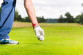 Man putting golf ball on tee, close shot Royalty Free Stock Photo