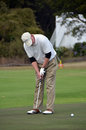 Man putting on golf greens ball during tournament Royalty Free Stock Photo