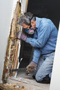 Man removing termite damaged wood from wall prying sheetrock and by infestation in house Stock Photography