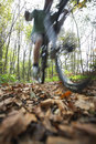 Man riding bike through forest blurred motion of mountain Royalty Free Stock Images