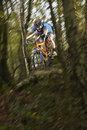Man riding bike through forest blurred motion of young mountain Stock Images