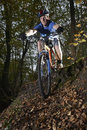 Man riding bike through forest young mountain Royalty Free Stock Images