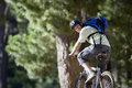 Man, with rucksack and cycling helmet, mountain biking on woodland trail, smiling, rear view Royalty Free Stock Photo