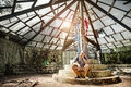 Man in ruined greenhouse sitting botanical garden puducherry india Royalty Free Stock Photography