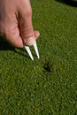 Man's Hand Repairs Divot on Golf Green - Vertical Stock Image
