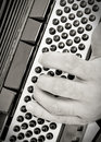 Man's hands playing an accordion Royalty Free Stock Photo