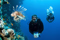 Man scuba diver with fish and coral Royalty Free Stock Photo