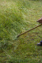Man with scythe using old for cutting the grass in garen Stock Photography