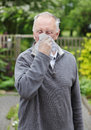 Man sneezing hay fever senior old with in his garden Stock Photo